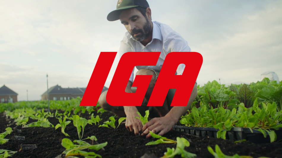 IGA Duchemin Family: the largest organic vegetable garden on a supermarket roof in Canada